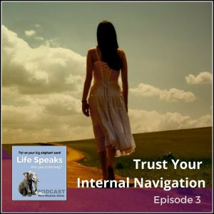 Life Speaks 003: Trust Your Internal Navigation